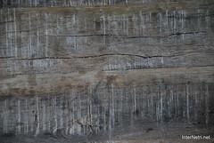 Фактура Старе дерево InterNetri Ukraine 0023