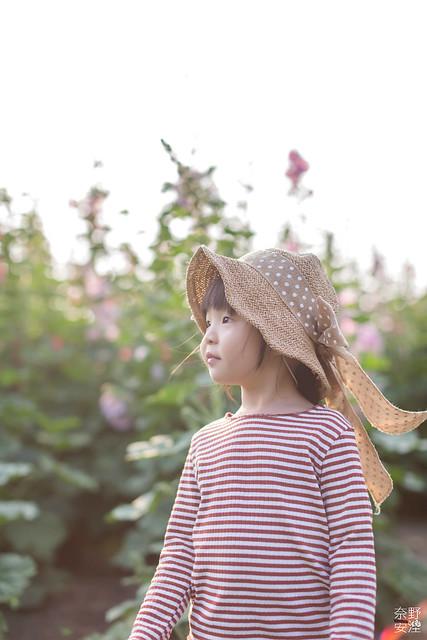 3月台南 親子寫真可以這樣拍 木棉花 蜀葵 小麥 一次讓你拍個夠 (58)