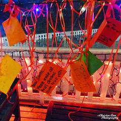 IMG_20171222_193940_212 (Christen Ann Photography) Tags: auckland christmas christmaslights christmaslights2017 december2017 lights motat motatevent museumoftransportandtechnology newzealand watermarked westernsprings