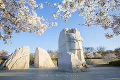 MLK (riggsy23) Tags: martin luther king junior jr memorial monument washington dc cherry blossoms spring sunrise wide angle canon 1635mm 28 structure statue