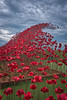 Poppy wave at Fort Nelson- (jdl1963) Tags: red poppy poppies enamel wave sculpture portsmouth hampshire fort nelson world war remembrance tribute flower sky high dynamic range hdr nikon d810 portsdown hill solent