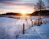 Friskala (tommi.vuorinen) Tags: turku finland winter landscape sunrise nature snow frost fence leading line tree forest island archipelago light golden shadow canon wide angle