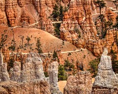 Switchbacks, Hikers and rock formations at the bottom of Queens Garden Trail, Bryce Canyon (PhotosToArtByMike) Tags: queensgardentrail switchbacks hikers brycecanyonnationalpark hike hoodoos rockspires trail brycecanyon canyon utah ut canyonfloor bryce limestone erosion scenic landscape southwesternutah