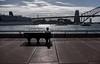 Man on Bench (Leon Sammartino) Tags: sydney harbour bridge street photography fujfifilm xe3 circular quay sun afternoon february 2018 clouds