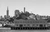 Pier-35, Coit Tower & Transamerica Pyramid (SPP - Photography) Tags: hiltonsanfrancisco pier35 sanfrancisco financialdisctrict telegraphhill city cityscape coittower transamericapyramid downtown pioneer park