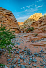 Sandstone Sightseeing (tquist24) Tags: hdr kaolinwash mojavedesert nevada nikon nikond5300 outdoor valleyoffirestatepark whitedometrail arid canyon clouds desert geotagged hike hiking landscape morning nature park redrocks rock rocks sandstone sky slotcanyon unitedstates