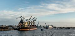 _DSF7024 - Port de Lorient. (Jack-56) Tags: lorient portdelorient fujix100t