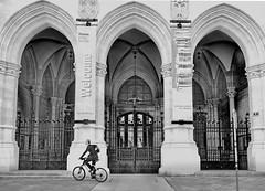 Welcome bicycle (christikren) Tags: rathaus biker austria architectur blackwhite bw christikren city entrance monochrome panasonic sw street urban vienna wien life bicycle building viennacityhall wienerrathaus