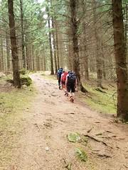 Hiking 😍 (mariaståhlmäkelä) Tags: throughherlens skåneleden