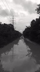 Reflections - like a river (Jose Haroldo Sena) Tags: pretoebranco blackandwhite monocromático monochrome reflexos reflexo reflection reflections
