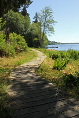 WA_1509_Black Lake (jedibob) Tags: black lake olympia washington scenic outdoors nature trail