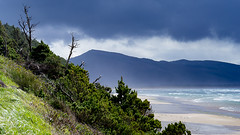 Where the Sky Meets the Earth (LadyBMerritt) Tags: ocean pacific oregon coastal beach clouds