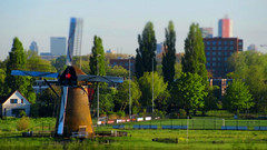 Mill and the city (STEHOUWER AND RECIO) Tags: mill windmill molen pendrecht pendrechtsemolen landscape view scenery ts tiltshift city rotterdam netherlands holland dutch nederland green groen gras urban background tree trees sky houses huizen gebouwen brown cityscape skyline fence wieken hek grass bomen white window balcony red rood canon sportfield sportveld skyscraper moulin pendrechtsemill polder greens effect photo image