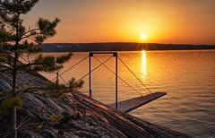 Spring evening, Norway (Vest der ute) Tags: xt2 sea seascape fjord water sunset trees tree evening rocks branch fav25 fav200