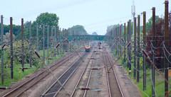 Overton Bridge Class 220 Back (Ravensthorpe) Tags: york rail trains diesel