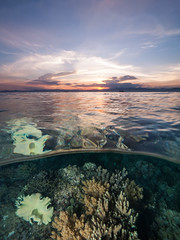Sunset Over Magic Island (altsaint) Tags: 714mm gf1 panasonic cebu coral maolboal philippines scuba splitworld underwater wideangle