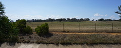 View north to open grasslands ACT (spelio) Tags: apr 2018 canberra act suburbs pano rangelands grasslands paddock reserve