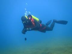 Frogman in blue waters (CZDiver) Tags: scubagear scubadiving divinggear doublehosescubaregulator laspirotechniqueroyalmistral vintagedivinggear vintagewetsuit vintagescuba vintagescubagear scuba scubatank