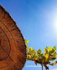 Carribean blue  #Martinique #lilisbeach #lilisbar #hotelbateliere #paillotte #carribeansun #carribeanlifestyle #carribeancolours #carribeanblue #sun #sunnysky #bluesky #travel #trip #placetobe #placetosee (isabella.cabre) Tags: carribeanlifestyle placetobe hotelbateliere lilisbeach bluesky lilisbar paillotte sun trip carribeanblue sunnysky martinique placetosee carribeansun travel carribeancolours