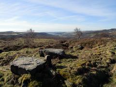 Upper Padley from Surprise View, March 2018 (Dave_Johnson) Tags: rock rocks surpriseview surprise view peakdistrict nationalpark peaks hills derbyshire longshaw longshawestate hopevalley valley grindleford village chatsworthestate upperpadley