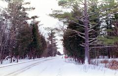 "Backroad (""Photo Guy"") Tags: 35mmcolourfilm landscape limerickforest nikkor35mmf2 nikonf2 winterlandscape"