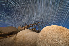 JoshuaTreeNP_StarTrail2 (Ken'sKam) Tags: joshuatreenp joshuatreenationalpark california geology nature stars startrails night sky nightsky boulders tree deadtree gnarlytree