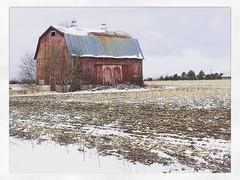 Northern Spring (arrjryqp6) Tags: snow barns barn field agriculture farm farming spring michigan northern