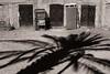 Palm Tree (Tom Levold (www.levold.de/photosphere)) Tags: fuji fujix100f marokko morocco x100f zagora sw bw street palme palmtree türen shadows schatten doors