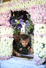 Good Friday (93) (Polis Poliviou) Tags: christianity christian orthodox faith believe love jesus christ people portrait portraits cyprus nicosia tradition traditional life cyprustheallyearroundisland cyprusinyourheart yearroundisland zypern republicofcyprus κύπροσ cipro кипър chypre ©polispoliviou2018 polispoliviou polis poliviou πολυσ πολυβιου mediterranean greekorthodox peoplephotography portraitphotography temple saint art byzantine chapel culture destination god historic history holy orthodoxy pray religion travel cloister cross ecclesiastic hermit pilgrim religious greektradition church goodfriday easter2018 easter holyweek jesuschrist holyfriday