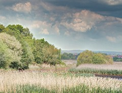AvalonMarshes(ShapwickHeath)No17 - Copy (iankellybn26dj) Tags: uk england somerset avalon spring summer landscape sky colour color hdr wetland wetlands clouds nature natural
