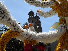 El mayo y la Peregrina (juantiagues) Tags: maios mayos pontevedra juantiagues juanmejuto