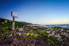 Thonga Beach Lodge (Sheldrickfalls) Tags: thongabeachlodge mabibi kwazulunatal kzn southafrica beach emptybeach