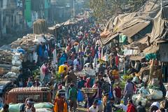 Flower Market - Kolkata, India (mjillster7107) Tags: fujifilm xpro1 kolkata india market flower population