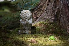 京都大原の壁紙プレビュー
