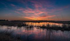 Hahnenmoor (andreasmally) Tags: hahnenmoor wasser water sunset clouds sky germany deutschland natur nature moor sonnenuntergang