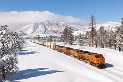 BNSF 7460 East at Flagstaff, AZ (thechief500) Tags: arizonadivide bnsf railroads seligmansubdivision flagstaff az usa us arizona