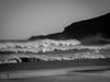 Sandfly Beach-013.jpg (alasdairward) Tags: dunedin newzealand