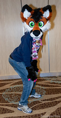 Booty Flip (SnapperGee) Tags: 2018 anthro anthropomorphic blfc biggestlittlefurcon furry fursuit ear ears flip cute adorable fox phoenixnest paw paws