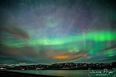 #aurora #northernlights #auroraborelis #iceland #2018 #landscape #photography #nikon #d800 #jamiepryerphotography #travelisamazing #travel #adventure #amazingearth #earthfocus #ig_myshot #discoverglobe #naturegeography #ourplanetdaily @nikon_photography_ (JamiePryerPhotography) Tags: jamiepryerphorography photography nikon nikkor d800 jamiepryer