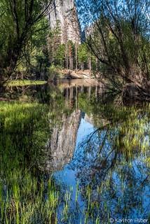 Yosemite Valley - Solitude_4695