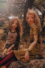 (mimiau_m) Tags: bjd asian doll outdoors