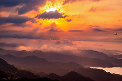 Leak thru The Shades (Jimweaver) Tags: sunset clouds cloudy purple jiufen village township mountain sea boat ship ocean taiwan oldfasioned 九份 夕陽 日落 夕照 海洋 船 山 雲 台灣 老街 懷舊 asia 亞洲 鳥 bird 飛 fly