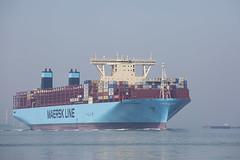 MANCHESTER MAERSK (angelo vlassenrood) Tags: ship vessel nederland netherlands photo shoot shot photoshot picture westerschelde boot schip canon angelo griete cargo container manchestermaersk