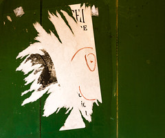 Le bonhomme de Monterosso (The guy from Monterosso) (Larch) Tags: bonhomme poster porte door visage face inconnu unknown oeil eye barbe bear guy nez nose portrait affiche monterosso cinqueterre ligurie italie italia italy création creation hippie
