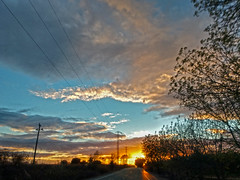 Driving Sunset (jhhwild) Tags: driving passenger moving motion sunset road powerlines power lines trees blur evening outdoors