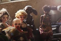 We are family (Roterwolkenvogl) Tags: dwarf dwarfwoman unoa unoachibi lilin iplehouse kid paige dollsbe bigbrother pumpkin otherside othersideoddity youpla youpladolls zopa zunbjd gentaroaraki alchemiclabo