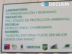 Proyecto CODECIAM - UTEM