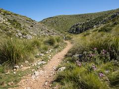 Mallorca 2018 (henning.wenk) Tags: 2018 ina insel mallorca ostern reisen urlaub travel vacation holiday outdoors nature sea