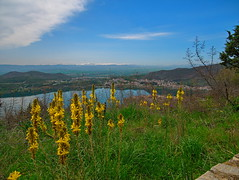 High View..... (Photo_hobbyist) Tags: flowers landscape kastoria profitis ilias greece macedonia makedonia high macedoniagreece timeless macedonian macédoine mazedonien μακεδονια македонија