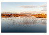 Connemara, Co. Galway, Ireland (annemfitzpatrick) Tags: wildatlanticway reeds landscape lough lake reflections light galway ireland sunset bog connemara